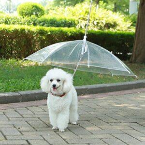 Paraguas para perros Lesypet
